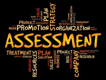 validation: ASSESSMENT word cloud collage, business concept background