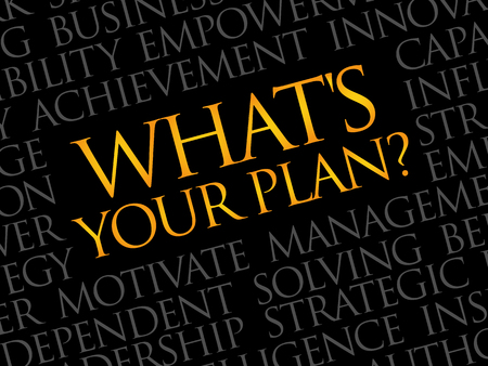 Whats Your Plan word cloud, business concept Illustration