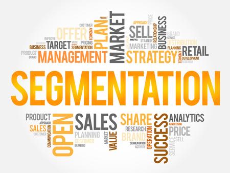 Segmentation word cloud, business concept Illustration