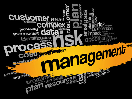 stakeholder: MANAGEMENT word cloud collage, business concept background