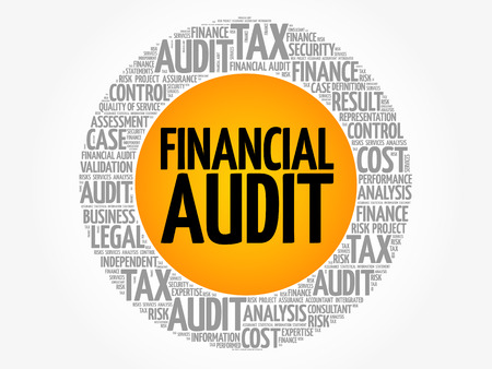 Financial Audit word cloud collage, business concept background Illustration