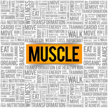 Muscle word cloud background, health concept