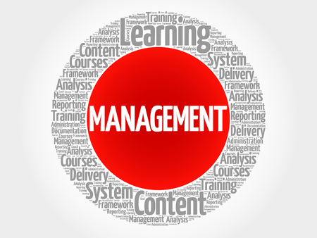 MANAGEMENT circle word cloud, business concept
