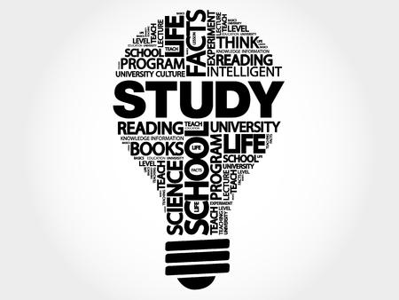 STUDY bulb word cloud, business concept illustration. Illustration