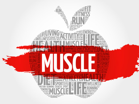 Muscle apple word cloud, health concept