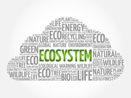 Ecosystem word cloud, conceptual green ecology background Vectores