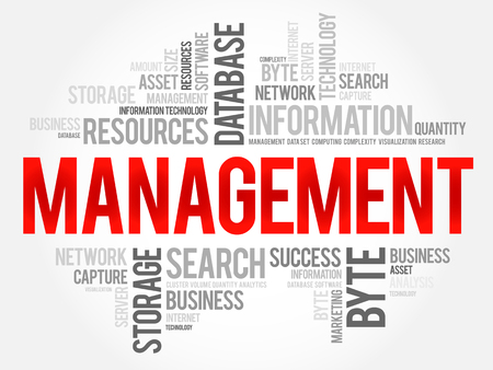 Management word cloud collage, business concept background. Çizim