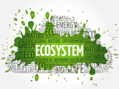Ecosystem word cloud, conceptual green ecology background Illustration