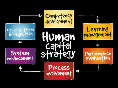 Human capital strategy mind map, business concept illustration.
