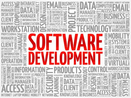 Concept de nuage de mot développement logiciel Vecteurs