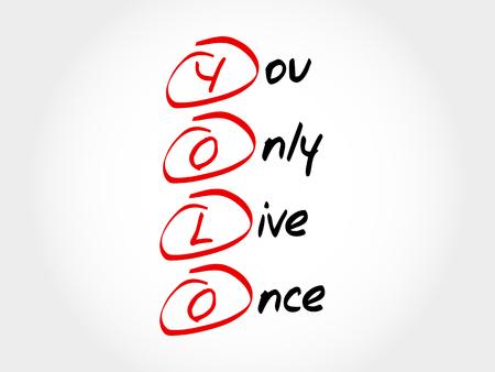 YOLO - You Only Live Once, acronym concept Vektorové ilustrace