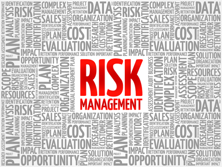 RISK Management word cloud collage, business concept background 向量圖像
