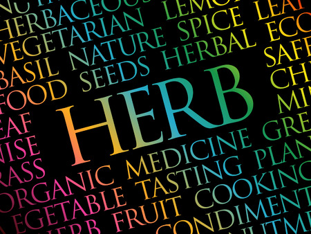 HERB word cloud collage, food concept background