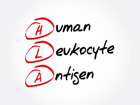 HLA - Human Leukocyte Antigen acronym