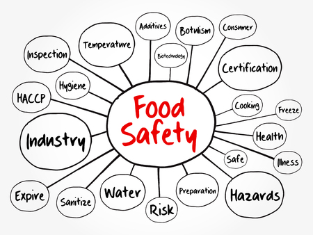 Food safety mind map flowchart, concept for presentations and reports  イラスト・ベクター素材
