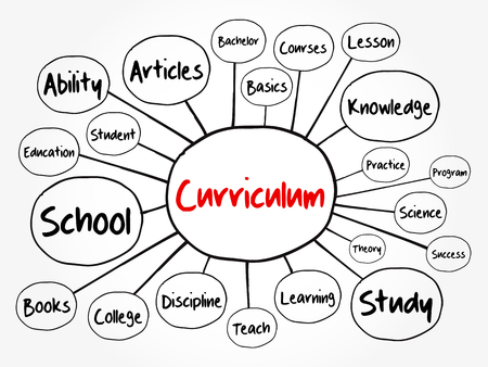 Curriculum mind map flowchart, education concept for presentations and reports