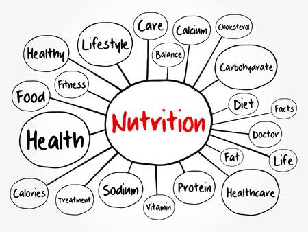 Diagramma di flusso della mappa mentale nutrizionale, concetto di salute per presentazioni e rapporti