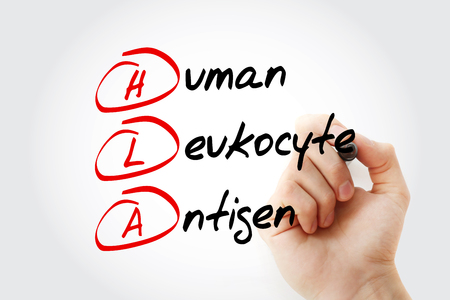 HLA - Human Leukocyte Antigen acronym with marker, concept background