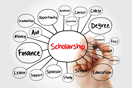Scholarship mind map flowchart with marker, education concept for presentations and reports