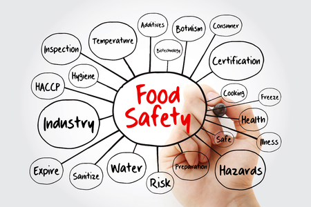 Mindmap-Flussdiagramm zur Lebensmittelsicherheit mit Markierung, Konzept für Präsentationen und Berichte