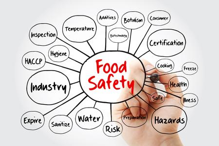 Schemat blokowy mapy myśli bezpieczeństwa żywności ze znacznikiem, koncepcja prezentacji i raportów