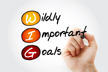 WIG - Wildly Important Goals acronym with marker, business concept background