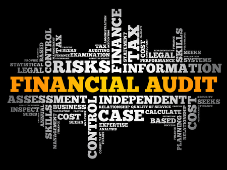 Financial Audit word cloud collage, business concept background Ilustracja