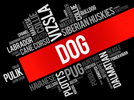 List of most popular dog breeds word cloud collage, animal concept background Illustration