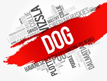 List of most popular dog breeds word cloud collage, animal concept background Vectores