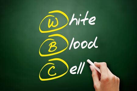 WBC - White Blood Cell acronym, concept on blackboard