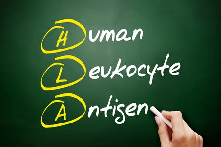HLA - Human Leukocyte Antigen acronym, health concept on blackboard