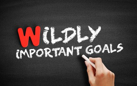Wildly Important Goals text on blackboard, business concept background