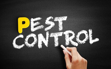 Pest Control text on blackboard, business concept background Stok Fotoğraf