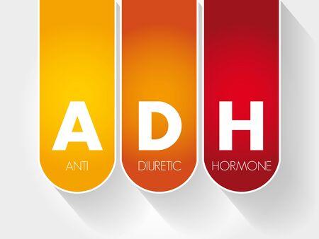 ADH - Antidiuretic Hormone acronym, concept background  イラスト・ベクター素材