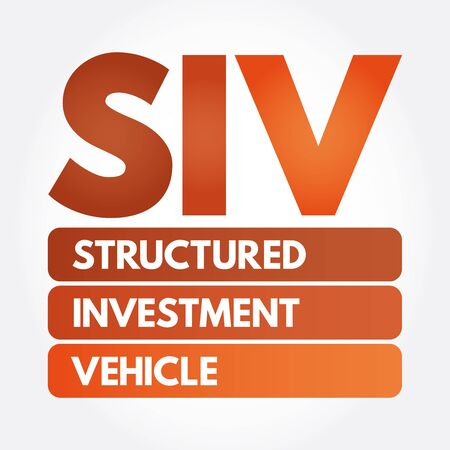 SIV - Structured Investment Vehicle acronym, business concept background Ilustrace