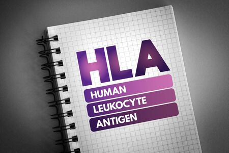HLA - Human Leukocyte Antigen acronym, medical concept background