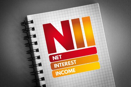 NII - Net Interest Income acronym, business concept background 版權商用圖片