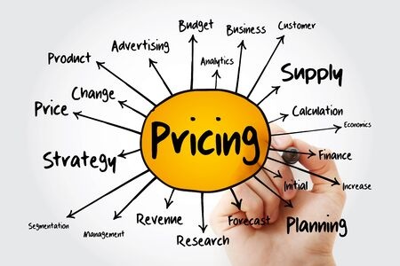 Pricing mind map flowchart with marker, business concept for presentations and reports