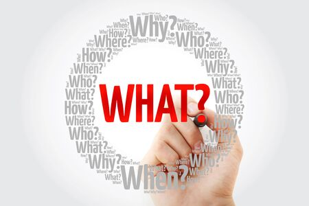 WHAT? Question and Questions whose answers are considered basic in information gathering or problem solving, word cloud background