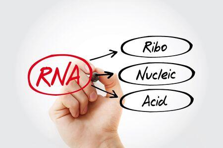 RNA - Ribonucleic acid acronym, medical concept background