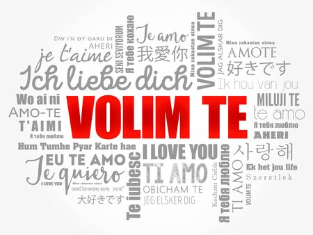 Volim te (I Love You in Croatian) in different languages of the world, word cloud background
