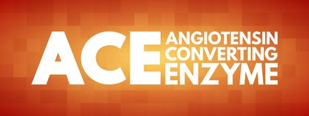 ACE - Angiotensin Converting Enzyme acronym, medical concept background Vectores