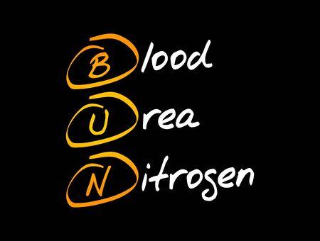 BUN - Blood Urea Nitrogen acronym, concept background
