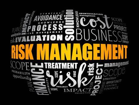Risk Management word cloud collage, business concept background Illustration