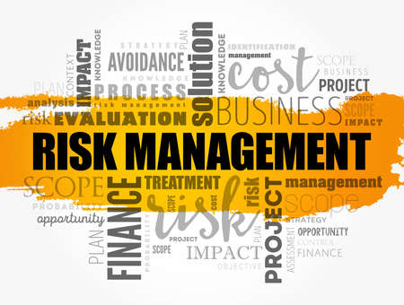 Risk Management word cloud collage, business concept background Vettoriali