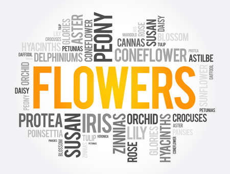 Flowers word cloud collage, concept background 向量圖像