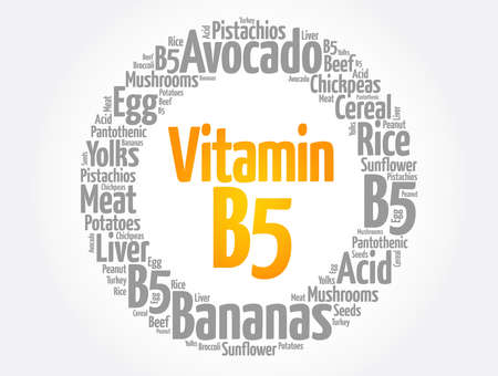 Vitamin B5 word cloud collage, health concept background 矢量图像