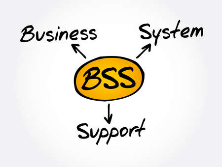BSS - Business Support System acronym, business concept background