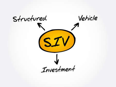 SIV - Structured Investment Vehicle acronym, business concept background  イラスト・ベクター素材