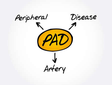 PAD - Peripheral Artery Disease acronym, health concept background 矢量图像